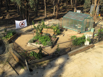 Photo of organic garden
