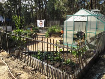 Photo of organic garden 2